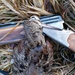 Felling etter ett flott fuglearbeid er ett faktum :)